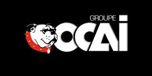 logo-fournisseurs-reca-peintures-joue-les-tours-outillage-ocai